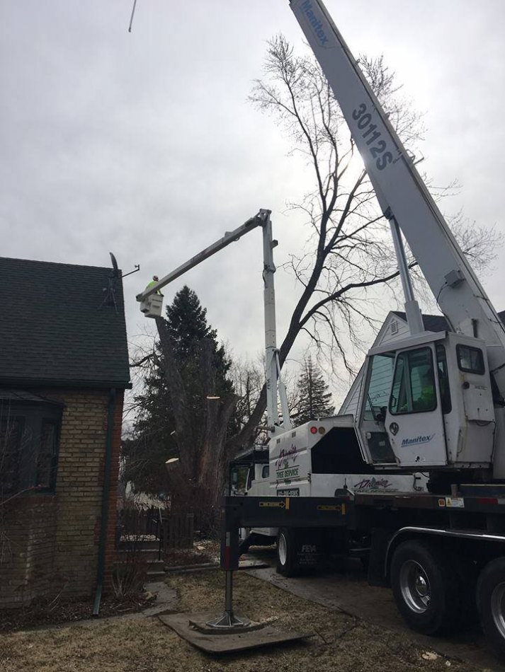 Using A Boom Truck And Crane To Access Tightly Confined Tree In Backyard